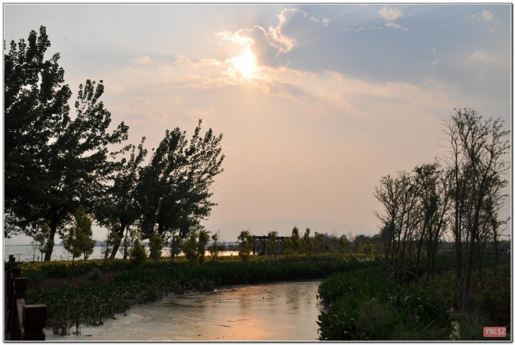 昆明海东湿地图片